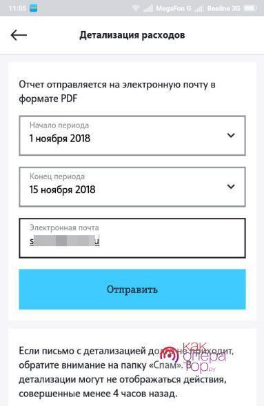 Заказ детализации через мобильное приложение