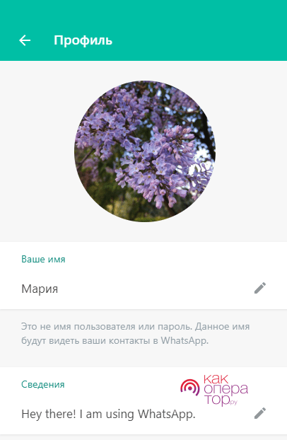 Web-версия