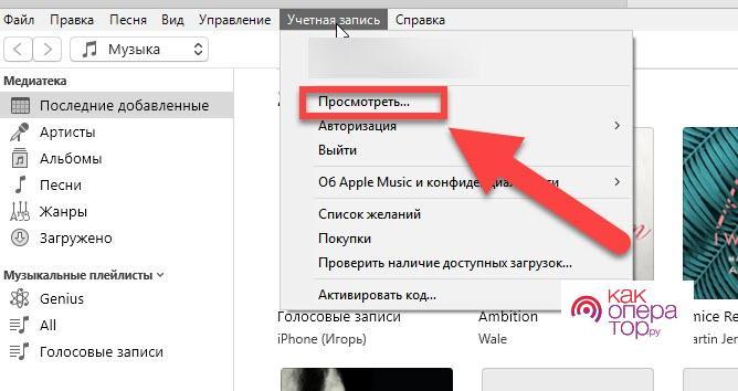 C:\Users\Геральд из Ривии\Desktop\iTunes-пункт-меню-Просмотреть.jpg