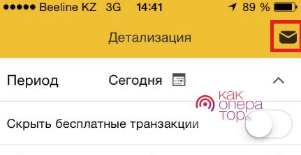 Заказ детализации на e-mail