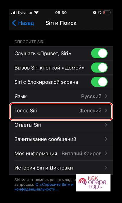 Выбор голоса работы голосового ассистента Siri в настройках iOS на iPhone